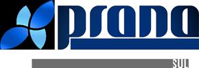 Prana Business Consulting