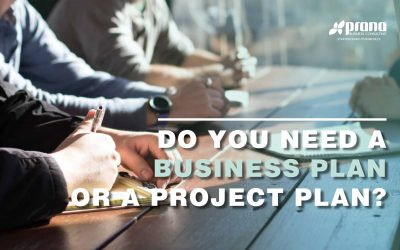 Do You Need a Business Plan or a Project Plan?