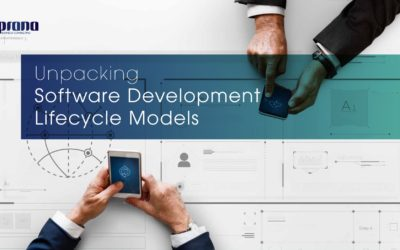 Unpacking Software Development Lifecycle Models